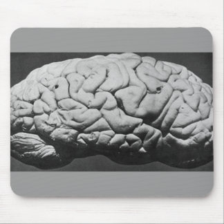 THE BRAIN OF CHARLES BABBAGE (1909) MOUSE PAD