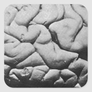 THE BRAIN OF CHARLES BABBAGE (1909) SQUARE STICKER