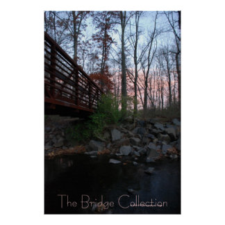 The Bridge Collection Poster