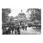 The Bronx Zoo Photographic Print