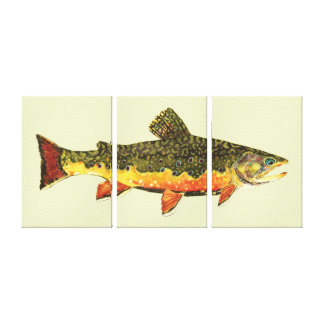 The Brook Trout Canvas Print