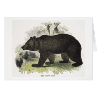 The Brown Bear, educational illustration pub. by t Card