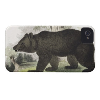 The Brown Bear, educational illustration pub. by t iPhone 4 Cover