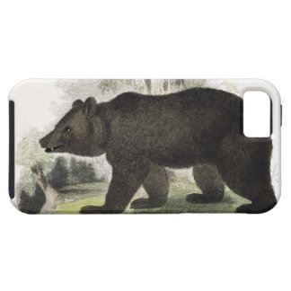 The Brown Bear, educational illustration pub. by t iPhone SE/5/5s Case