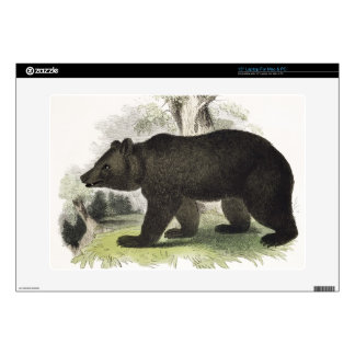 The Brown Bear, educational illustration pub. by t Laptop Skin