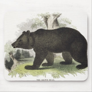 The Brown Bear, educational illustration pub. by t Mouse Pad