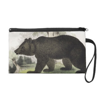 The Brown Bear, educational illustration pub. by t Wristlet