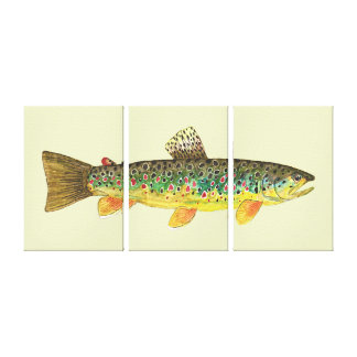 The Brown Trout Stretched Canvas Prints
