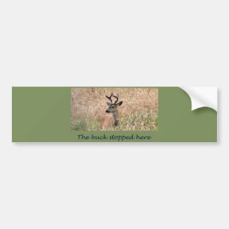 The Buck Stopped Here (2) Bumper Sticker