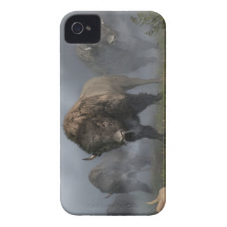 The Buffalo Vanguard iPhone 4 Case-Mate Cases
