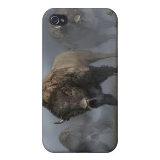 The Buffalo Vanguard Cover For iPhone 4
