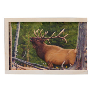 The Bugler Elk Bull Wooden Keepsake Box
