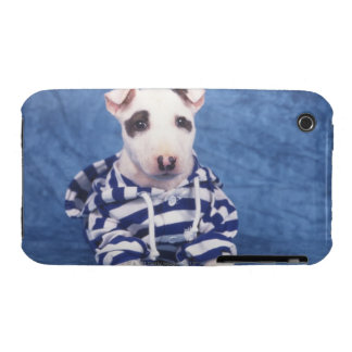 The Bull Terrier is a breed of dog in the iPhone 3 Case