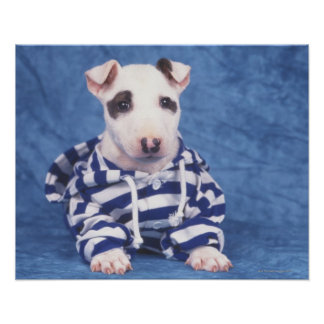 The Bull Terrier is a breed of dog in the Print
