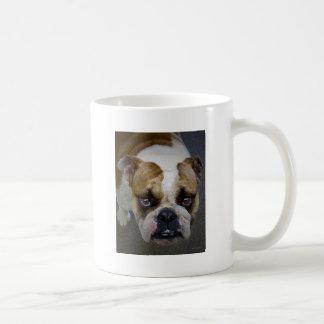 the bulldog mugs