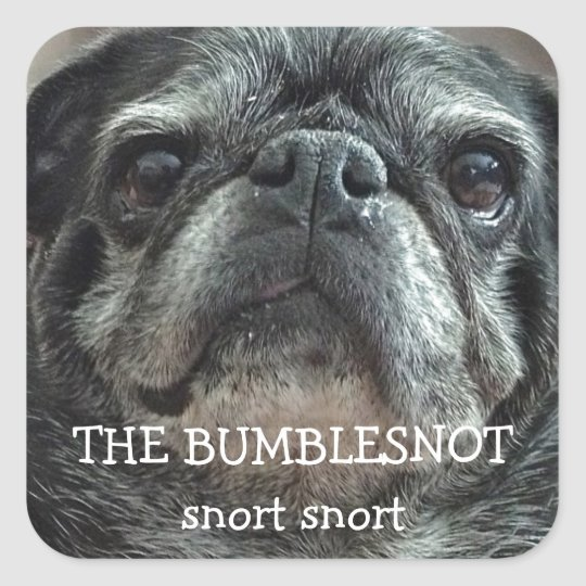 "The Bumblesnot ""snort snort"" stickers"