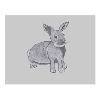The Bunny Postcard