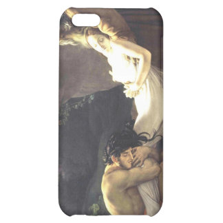 The Burial of Atala Case For iPhone 5C