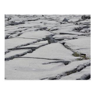 The Burren in Ireland Postcard