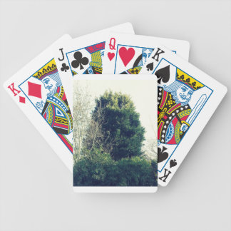 The bush bicycle playing cards