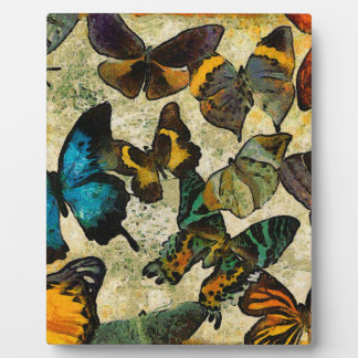The Butterfly Collection Photo Plaque