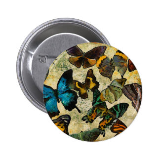 The Butterfly Collection Pinback Button
