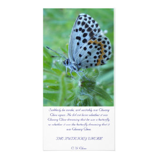 The butterfly dream card photo cards