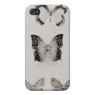 the butterly collector iPhone 4/4S case