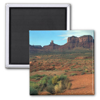 The Camel, Monument Valley Refrigerator Magnet