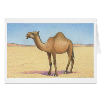 The Camel Note Card