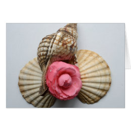 The Camellia And The Shells Card