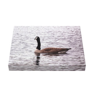 The Canada Goose Canvas Print