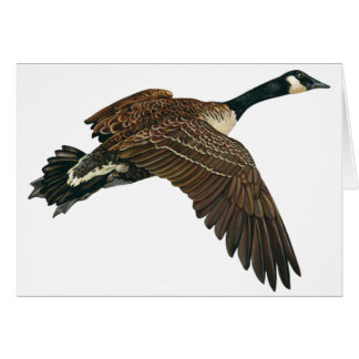 THE CANADIAN GOOSE GREETING CARDS