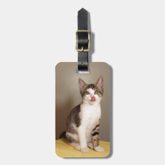 The Can's Open Humorous Tabby Cat Luggage Tag