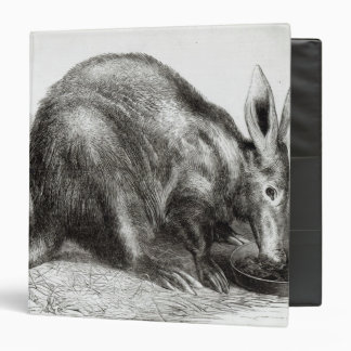 The Cape Ant-Eater Binder