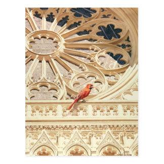 """The Cardinal"" Church & Bird Watercolor Postcard"