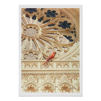 """The Cardinal"" Church & Bird Watercolor Poster"