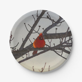 The Cardinal In The Morning Paper Plate