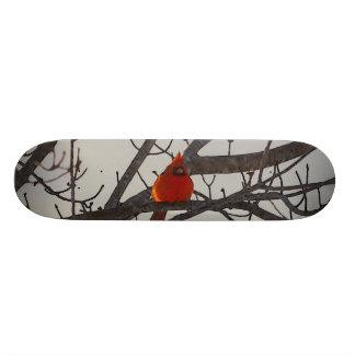 The Cardinal In The Morning Skateboard Deck