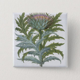 The Cardoon, from the 'Hortus Eystettensis' by Bas Pinback Button