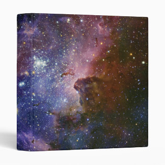 The Carina Nebula Eta Carina Nebula NGC 3372 Binder