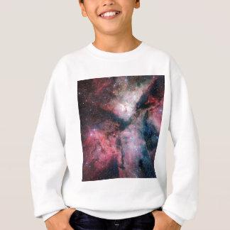 The Carina Nebula imaged by the VLT Survey Telesco Sweatshirt