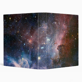 The Carina Nebula's hidden secrets Binder