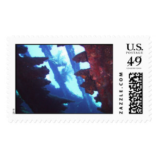 The Carnatic Postage Stamp
