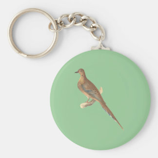 The Carolina Turtle Dove(Ectopistes carolinensis) Basic Round Button Keychain