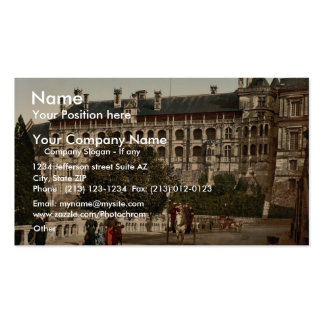 The Castle, wing of Francis I, the facade, Blois, Double-Sided Standard Business Cards (Pack Of 100)