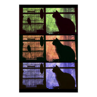 The Cat and The Bird Poster