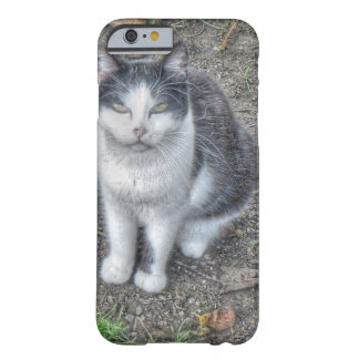 the cat barely there iPhone 6 case