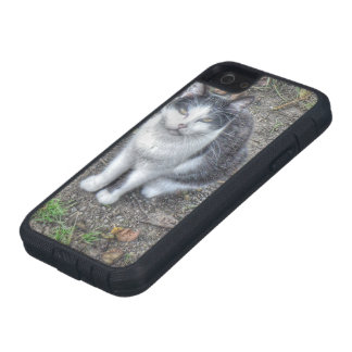 the cat iPhone 5 cover