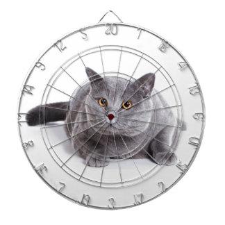 the cat dartboards